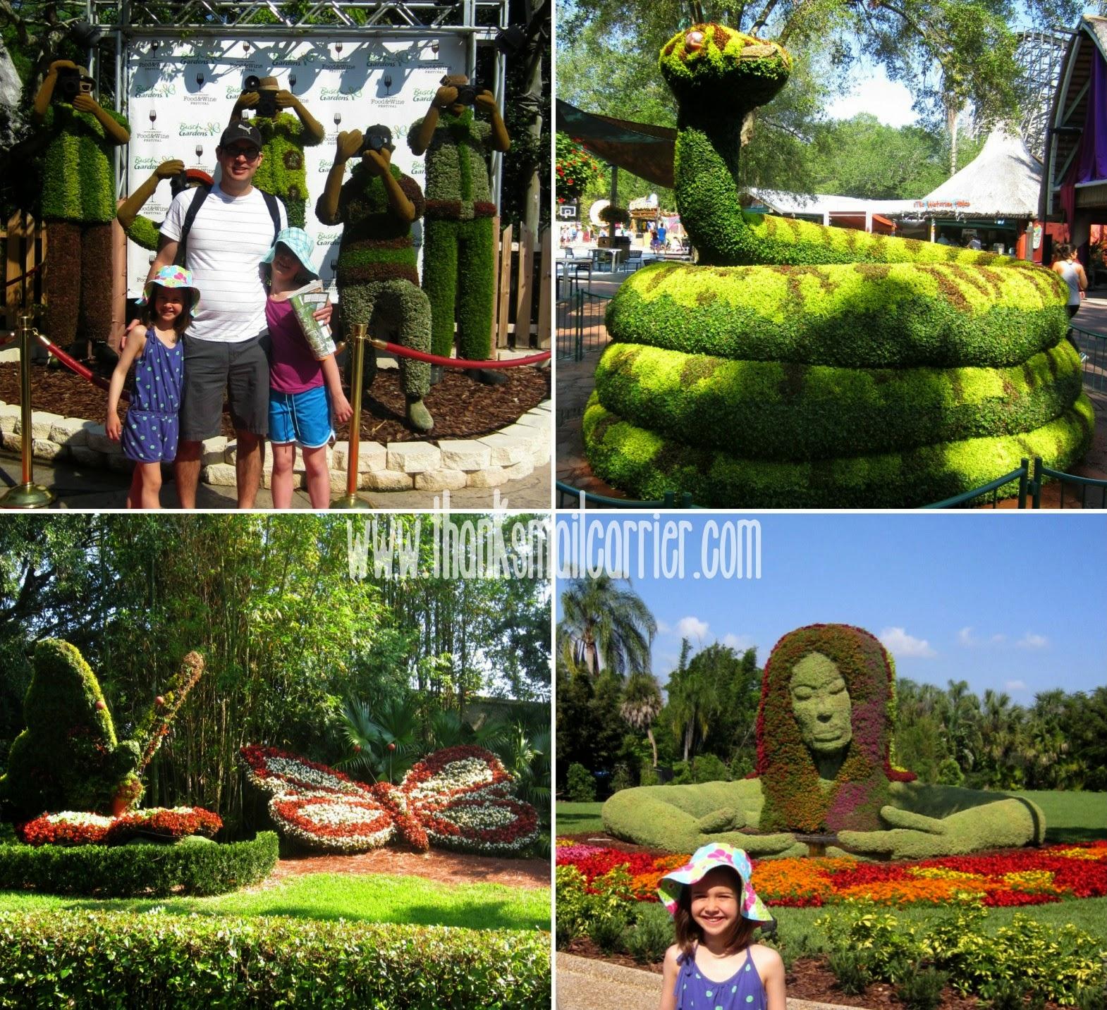 Busch Gardens plants