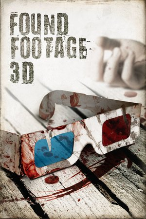 Poster Found Footage 3D 2016