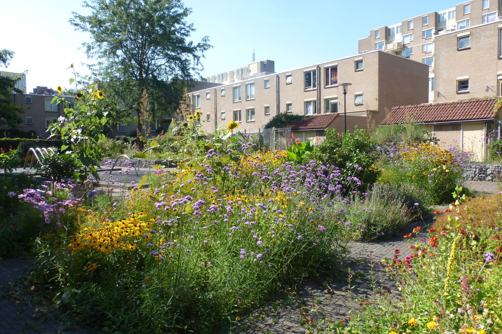Botanische Tuin Rotterdam : Stekkengekken rotterdam geheime paradijs in rotterdam
