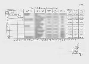 Visado on-arrival para Birmania