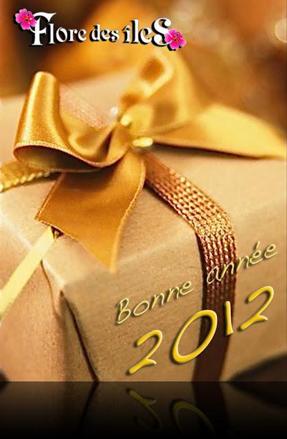 http://1.bp.blogspot.com/-e9e0JLsV98Q/Tv5MO0ue9lI/AAAAAAAAAWY/15GtdfDFZag/s640/Cadeau+FDI+blog.jpg