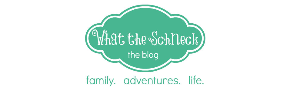 What the Schneck! - the Blog