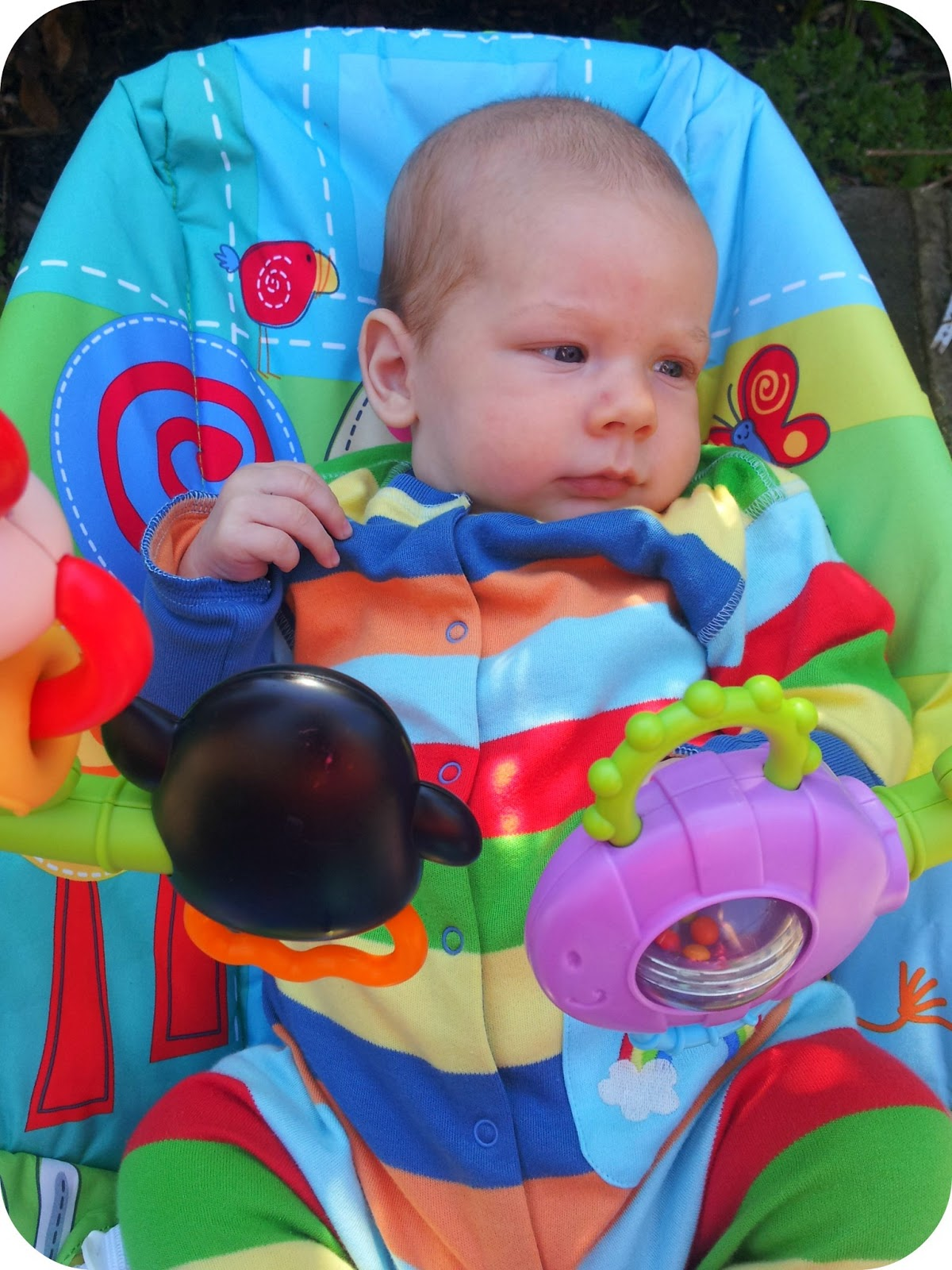 The Adventure of Parenthood Fisher Price Discover n Grow Bouncer