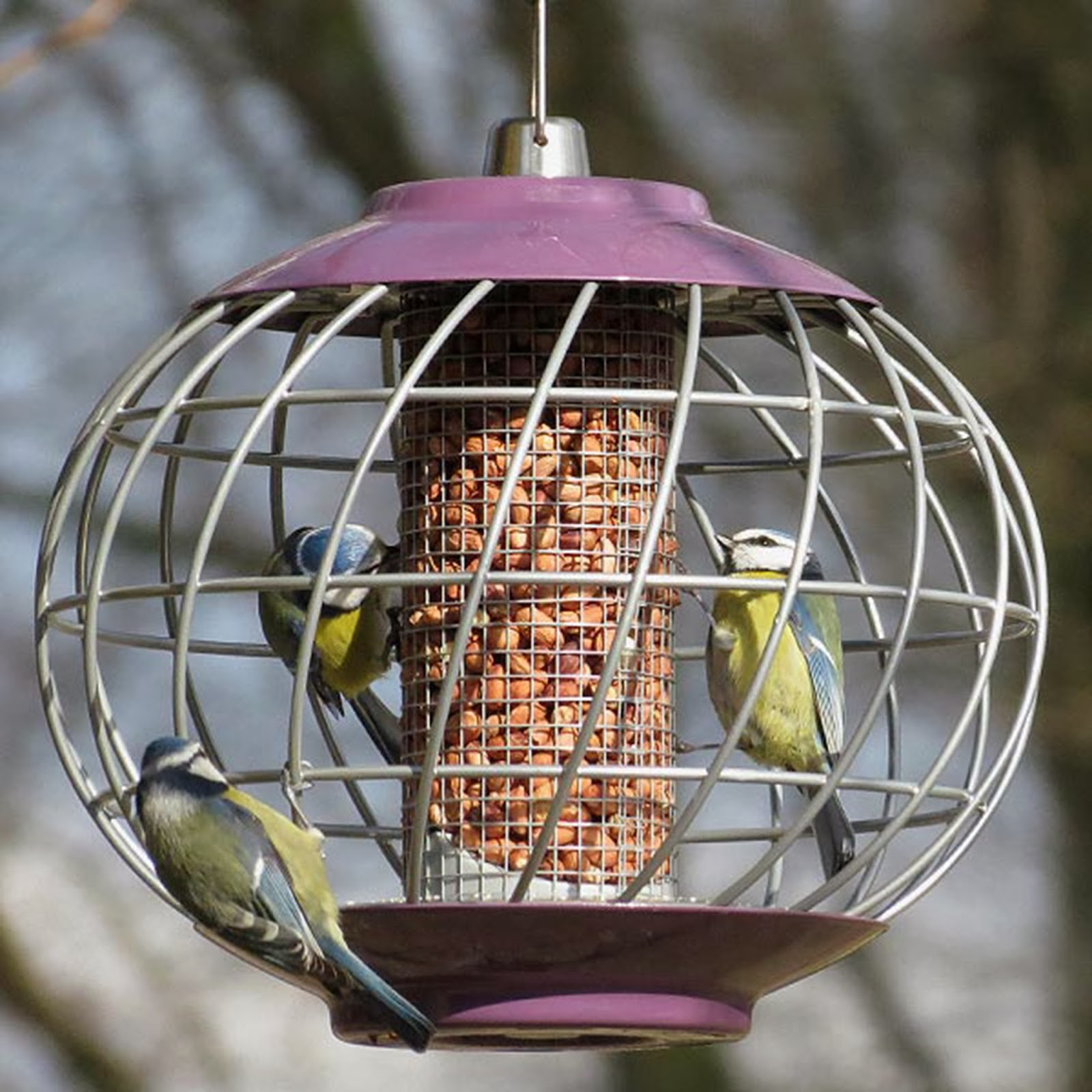 Wild Bird Feeders from Flyte so Fancy