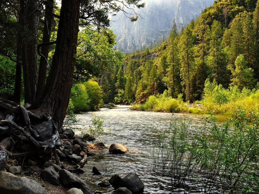 Yosemite Falls, HD Wallpaper