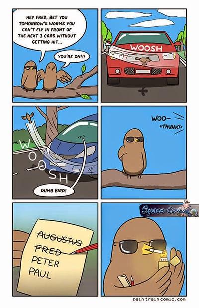 funny birds comics humor