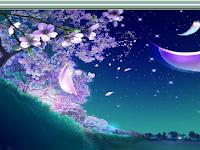 Download Magic photo Editor Terbaru 2013 full version