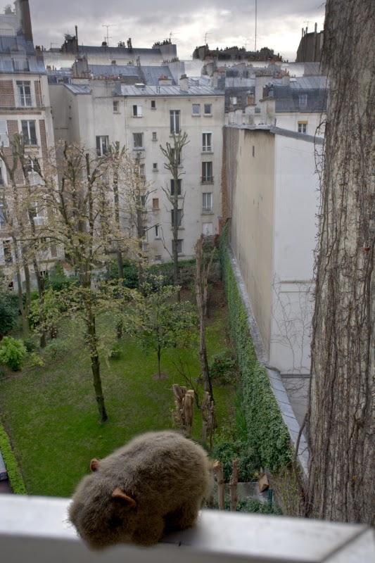 Paris accommodation.