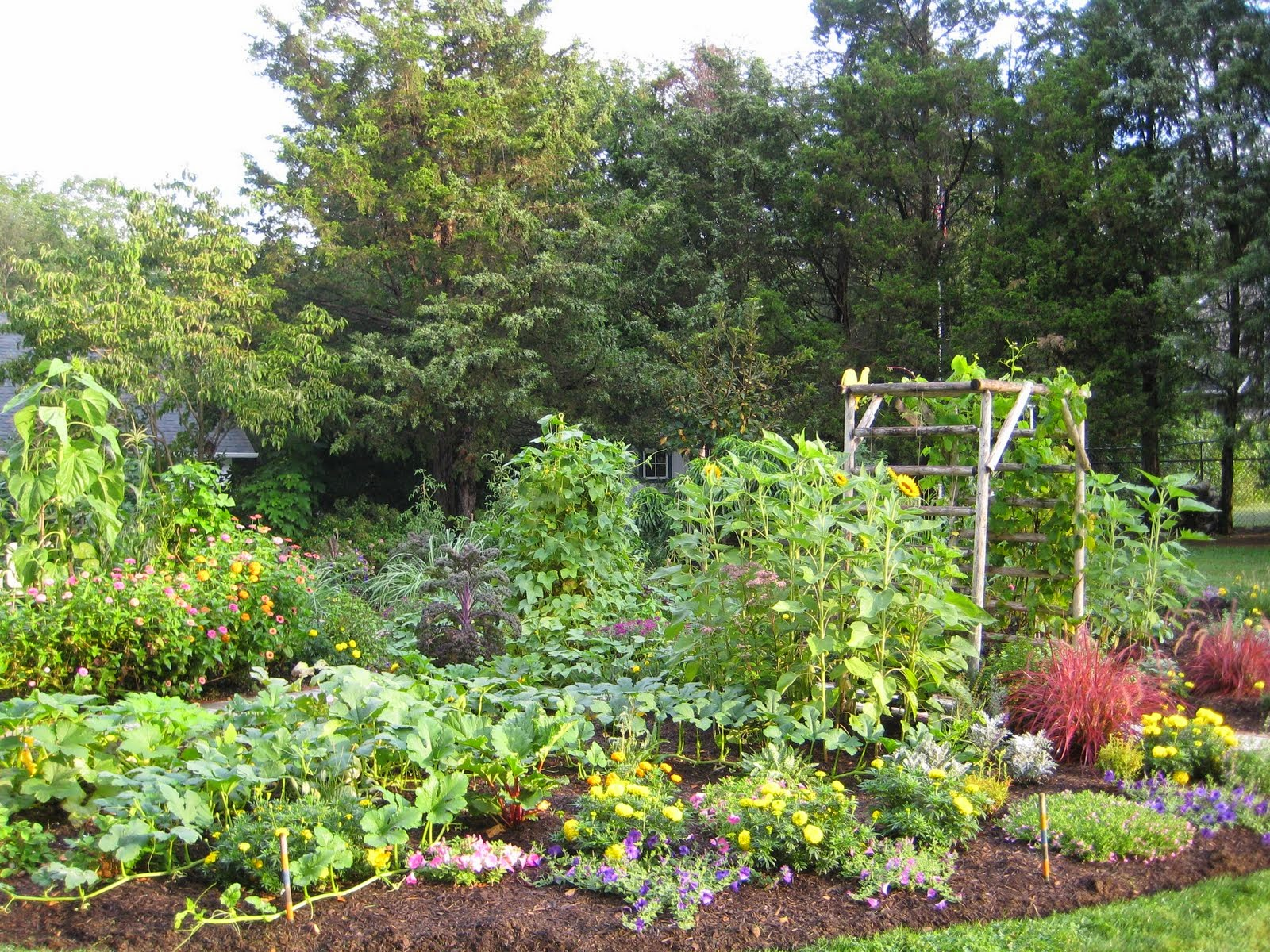 Home Gardening Flowers And Vegetables Ideas Modern Home Design