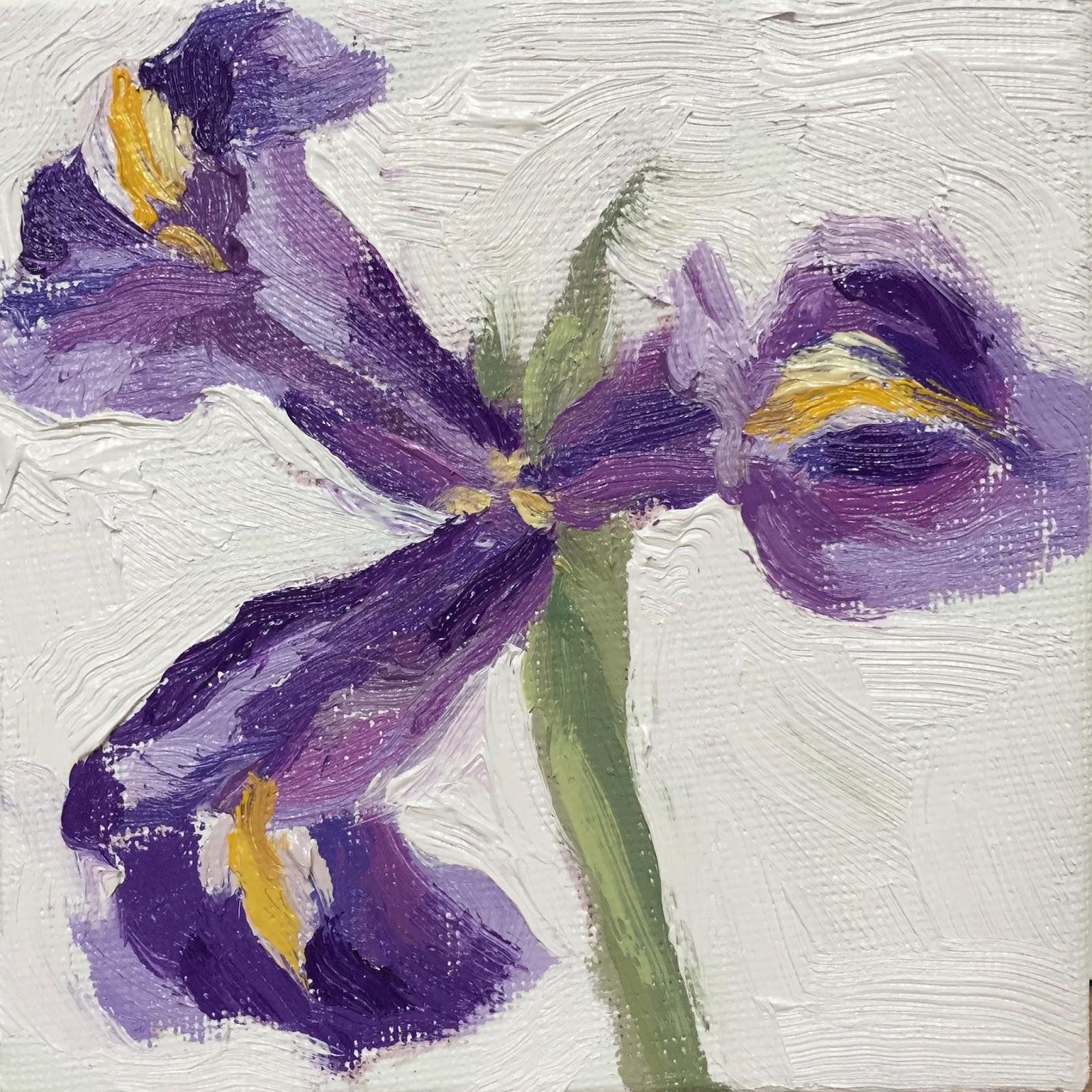 Clare Bowen Artist Daily Painting 24 Open Iris Flower 4x4
