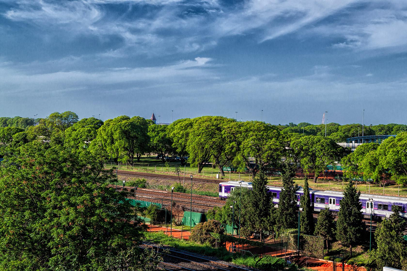 Un tren cruza el paisaje arbolado.