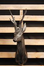 cervo metallic bronzo