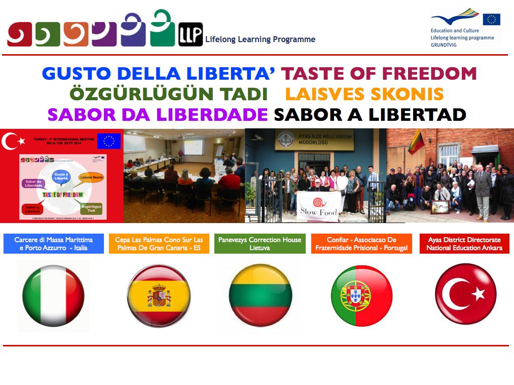 TASTE OF FREEDOM