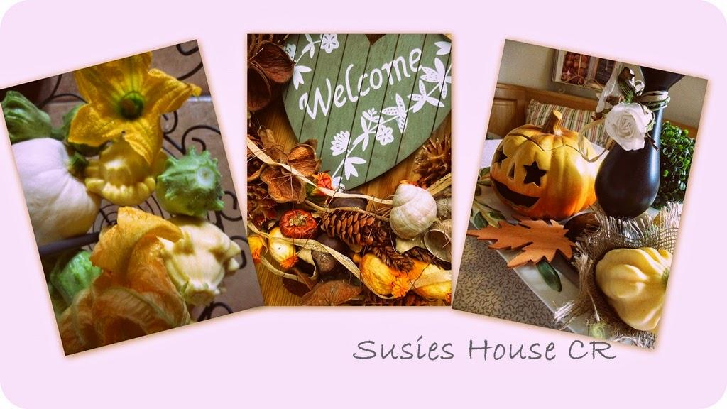 Susies House CR