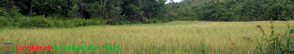 Link-AR Borneo