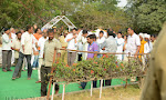 Akkineni Nageswara Rao Cremation Photos Gallery-thumbnail
