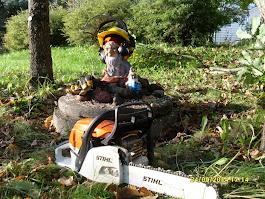 Vuodenaikojen mukaan Puutarhatonttu Olavi saapuu leikkaamaan puunne ja tarvittaessa kaatamaan puut