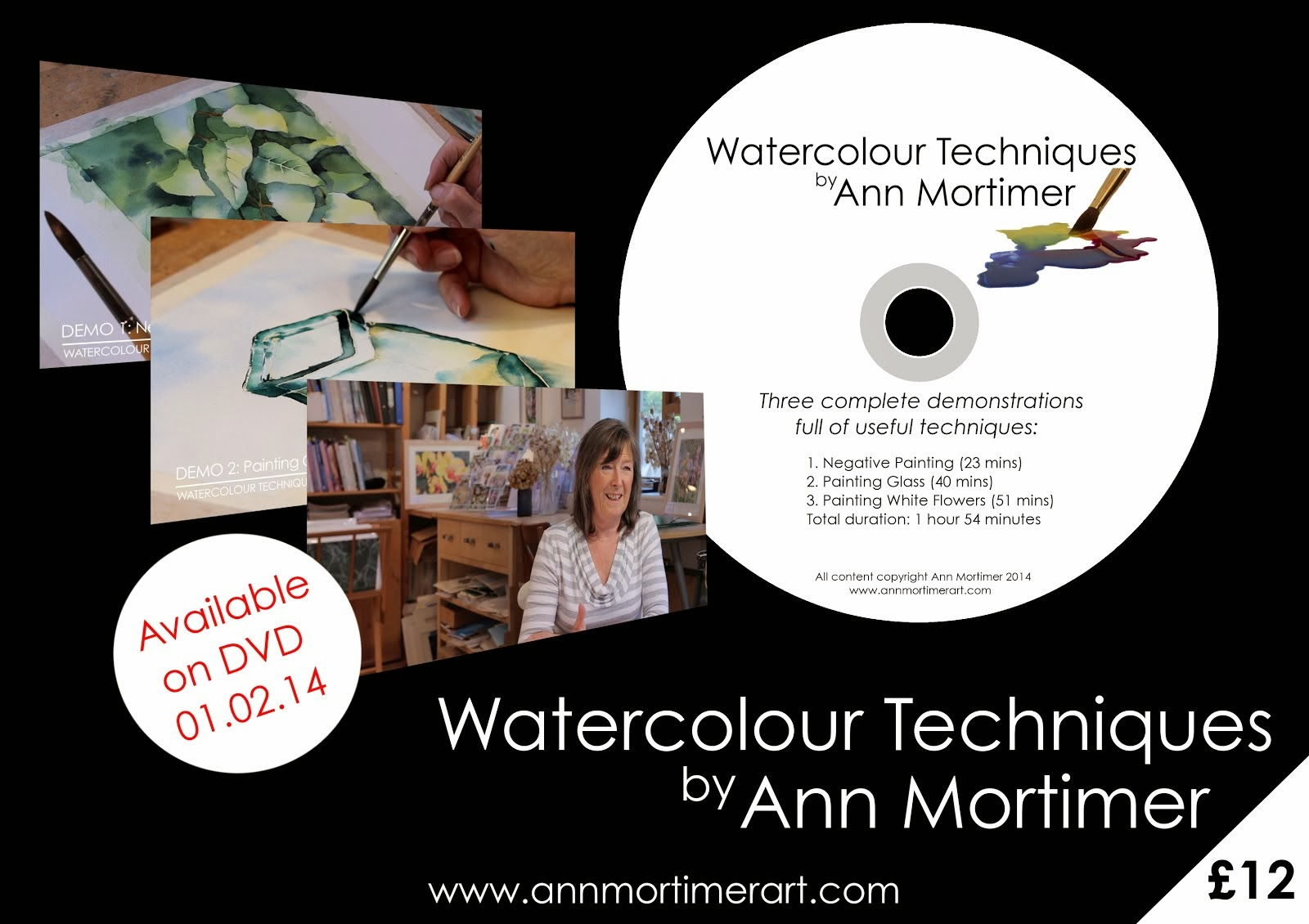 DVD Watercolour Techniques by Ann Mortimer