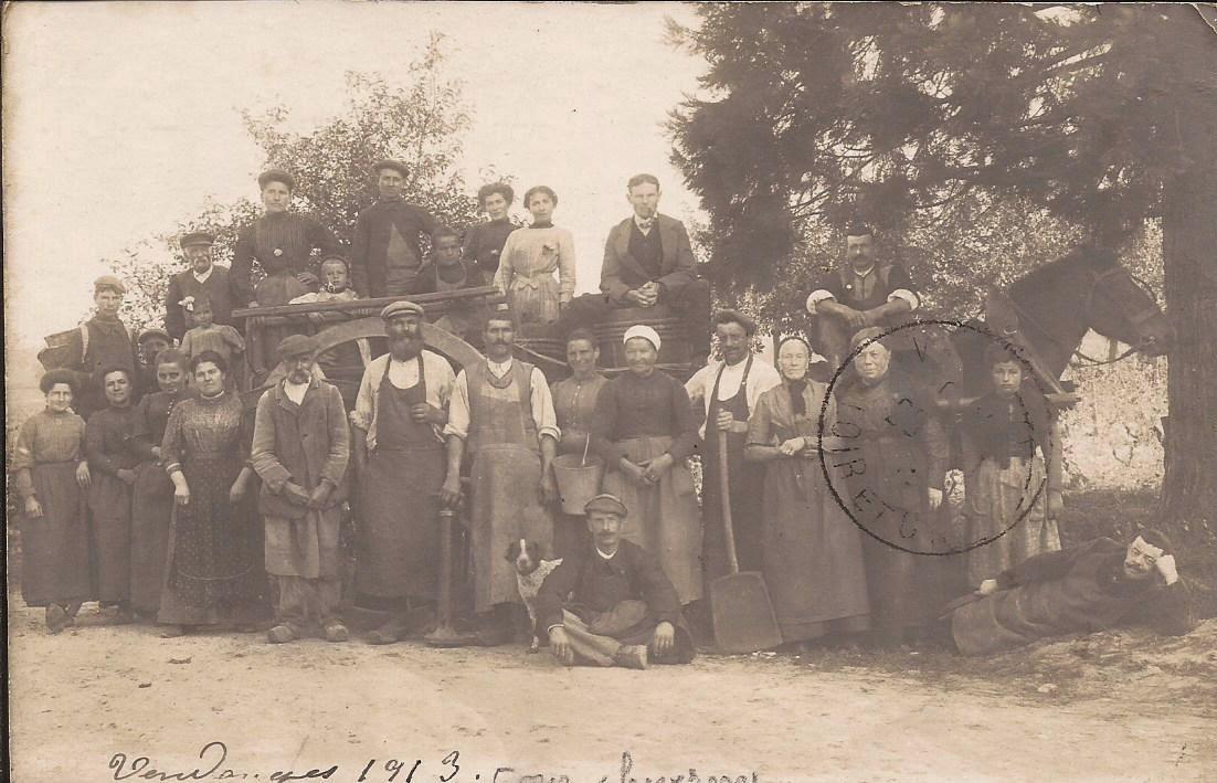 Vendanges - Cour-Cheverny 1913