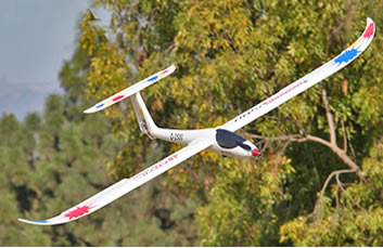 Diamond 2500 RC Glider Image
