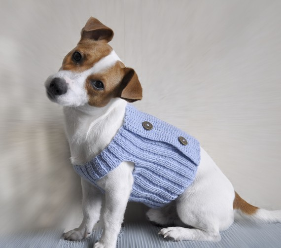 Knitting Pattern For A Small Dog Coat : orgu Kopek Kiyafetleri Nalan unal Parti Organizasyon