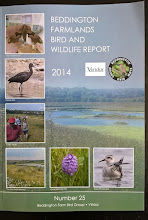 BEDDINGTON FARMLANDS BIRD AND WILDLIFE REPORT 2014