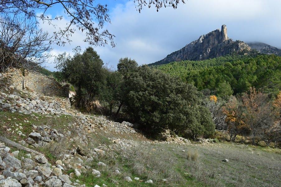 Entre bosques y piedras