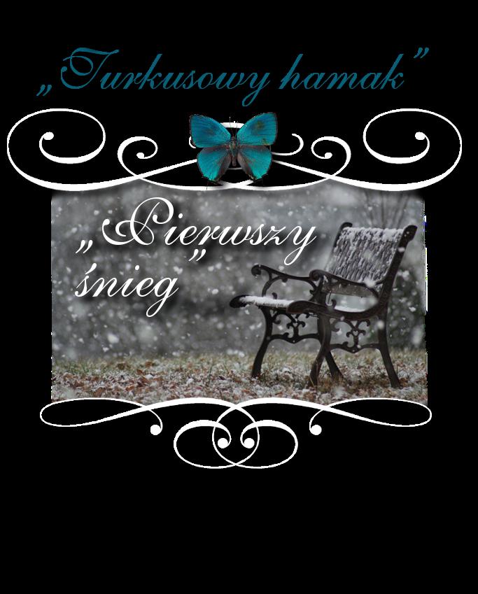 Wyzwanie Turkusowy Hamak