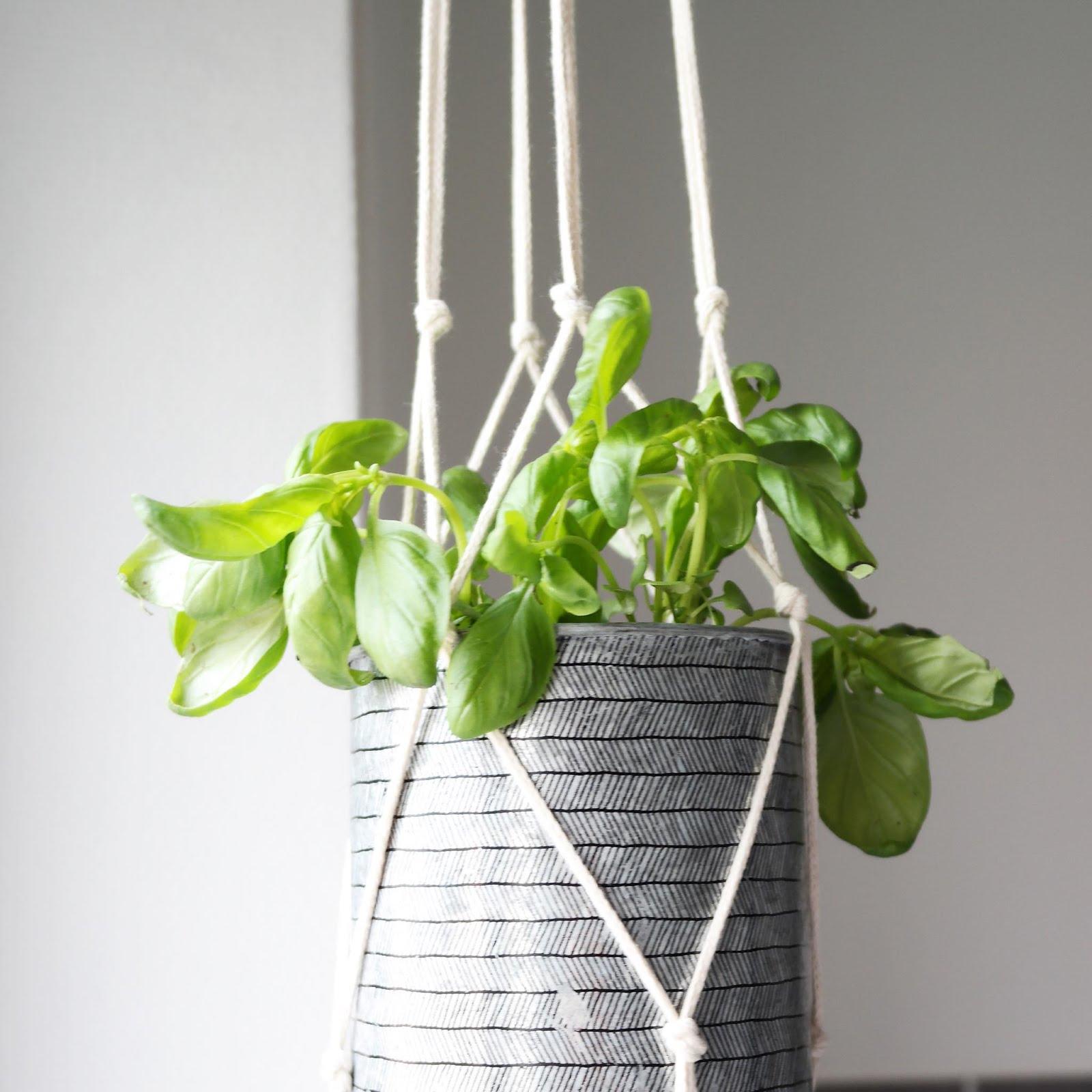 diy suspension plant hanger shylylovely. Black Bedroom Furniture Sets. Home Design Ideas