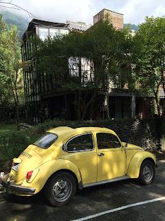 Yellow Beetle 回音谷民宿