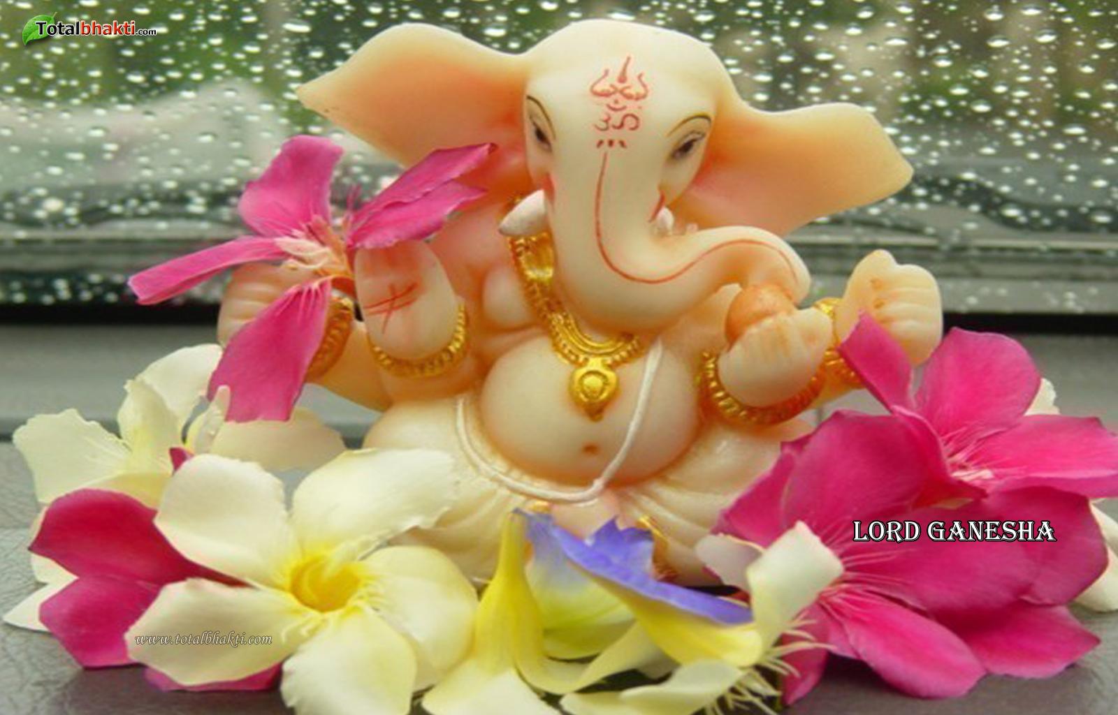 Popular Wallpaper Lord Cute - cute-Ganesh-wallpaper  Best Photo Reference_137255.jpg