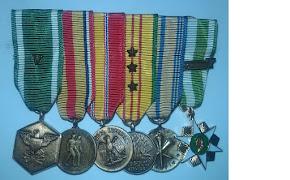 Vietnam Medals