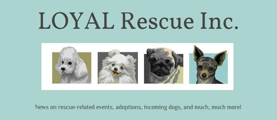 LOYAL Rescue Inc.