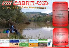 VIII CABRIT CUP