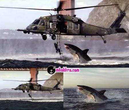 sharkcopter