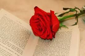 Η ομορφιά της γνώσης