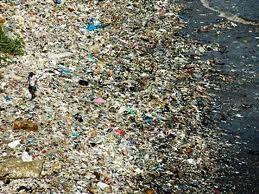 Isla de la basura
