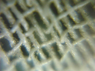 microscopic camera photos android