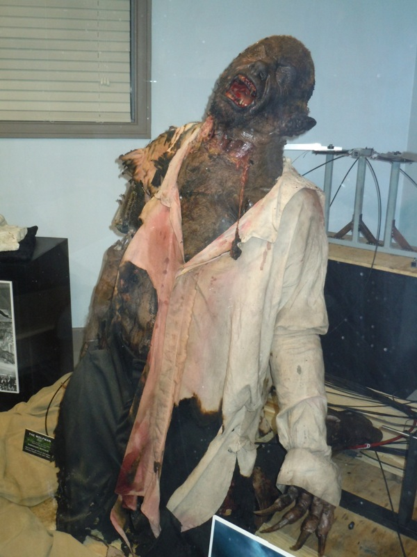 The Wolfman animatronic werewolf prop