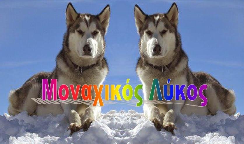 **Μοναχικός Λύκος Blogspot**