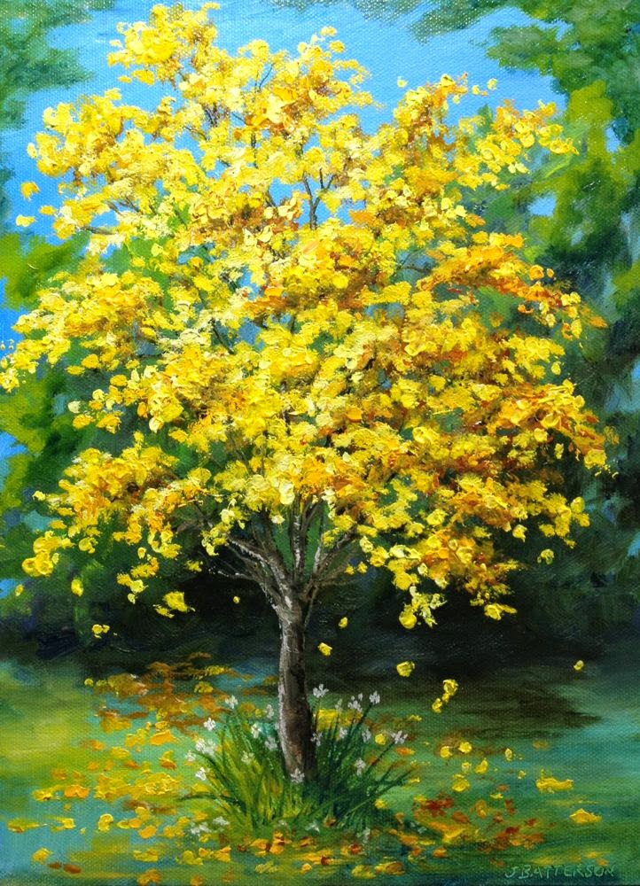 Judy batterson florida art glorious tabebuia a yellow blooming we had a beautiful blooming of tabebuia trees in florida this spring this tree was by my house the yellow blooms were like flowering sunshine mightylinksfo