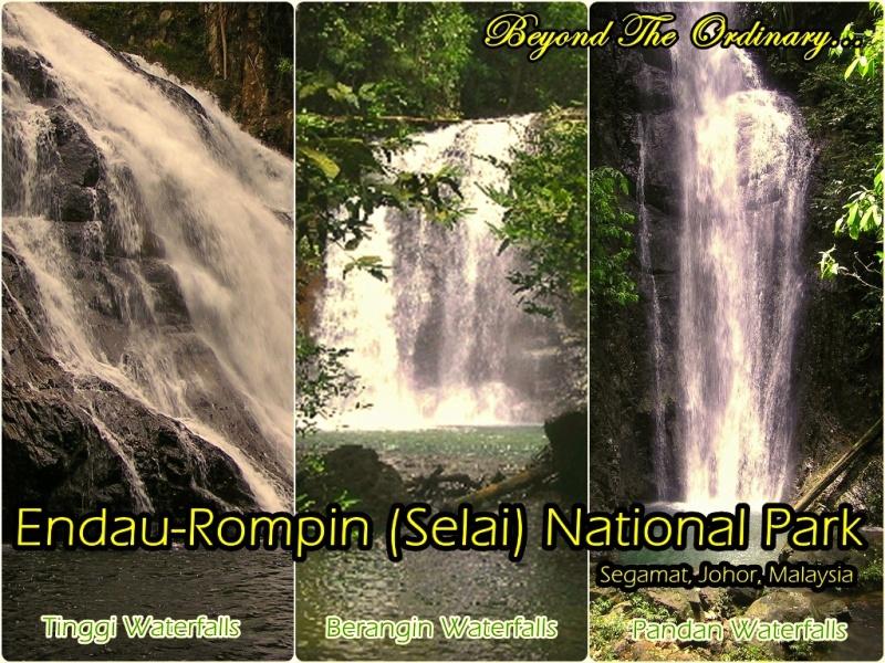 Endau Rompin (Selai) National Park