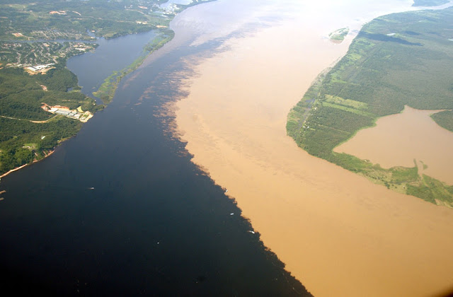 The Natural Wonders of Brazilian River Water