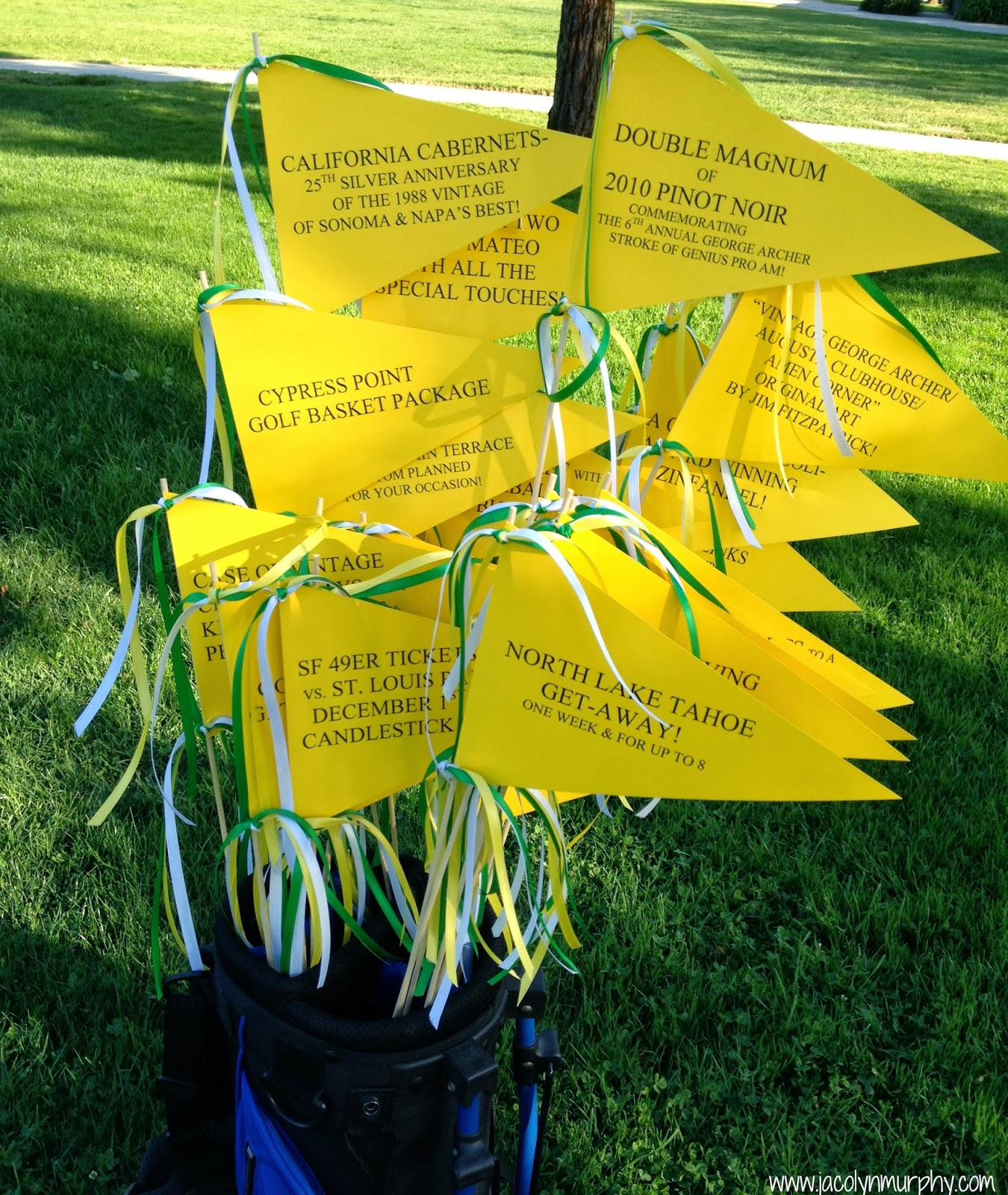 jac o' lyn murphy: golf tournament flags
