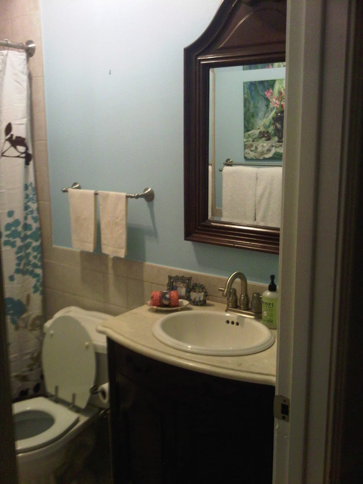 A little southern sass brand new blue bath Bathroom design no window