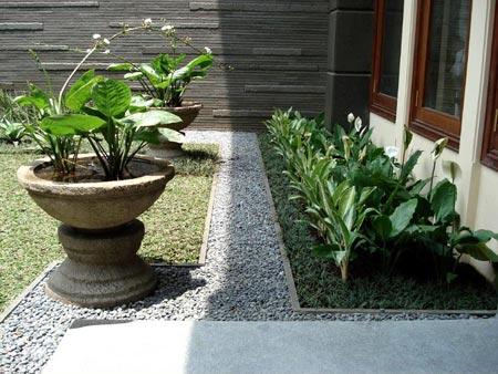 Taman Minimalis Samping Rumah
