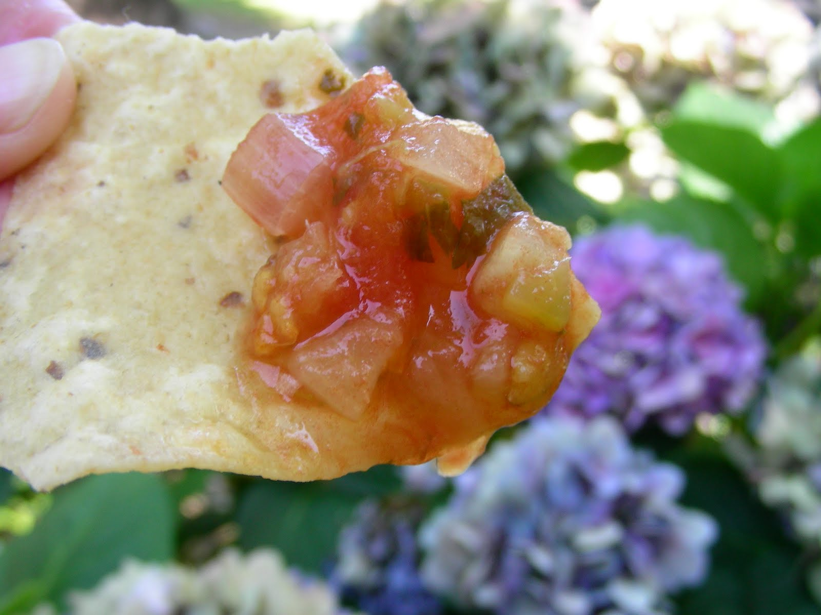 Susan Can Cook: Pineapple Tomato Salsa