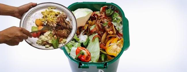 """Resultado de imagem para comida """"lixo"""""""