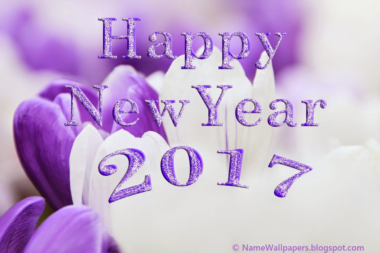 Happy New Year 2017 Wallpapers HD Images Pictures 2017 Download Free ~  Happy .