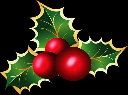 Im genes y gifs animados im genes de flores de navidad - Fotos de adornos de navidad ...